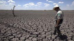 Climat: atténuation et adaptation, c'est