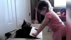 21 Pets Get Revenge On