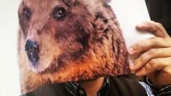 Posate i fucili e lasciate vivere gli orsi, i simboli vanno protetti, non