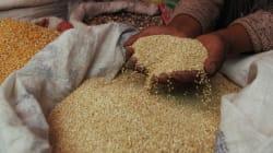 Quinoa: tutti ne parlano, ma pochi sanno cos'è. Ecco 8 cose da