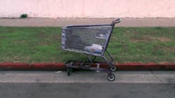 Woman Found Dead In Shopping Cart