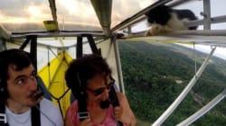 Toujours vérifier dans l'aile avant de décoller!
