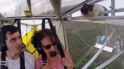 Un gato polizón sorprende a un piloto en pleno vuelo