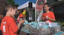 La jeune fibre entrepreneuriale prend d'assaut les rues du Québec