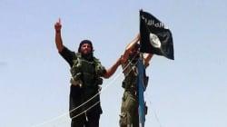 Daech, 1 an après : comment le califat s'est