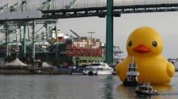 La malédiction du canard géant a encore