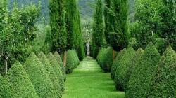 I 10 parchi giardini più belli