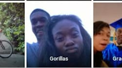 機械が人種差別? Googleのアプリ、黒人の写真をゴリラに分類