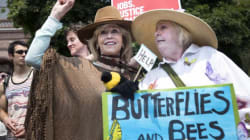 Jane Fonda Attends Toronto Climate Rally With David Suzuki, Naomi