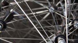 $19,000 Bike Stolen In