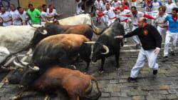 Lâchers de taureaux en Espagne: quatre décès en une fin de