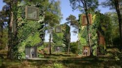 Le futur, une forêt de