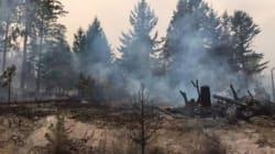C.-B. : 115 nouveaux feux de forêt en 24 heures