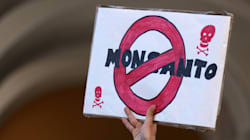 Pro-GMO Spin Diverts Attention From Root Causes Of