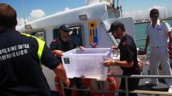 Sequestrato il porto turistico di Roma, 4