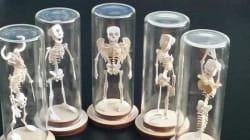 Vous pouvez assembler les squelettes du Minotaure ou d'une