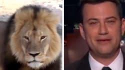 Ému, Jimmy Kimmel étrille le chasseur