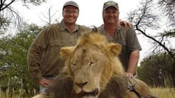 Une pétition pour interdire les trophées de chasse de l'Afrique au