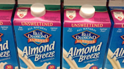 Your Favourite Almond Milk Has Barely Any Almonds In
