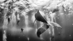 Le 10 foto che hanno vinto il National Geographic Traveler Photo Contest