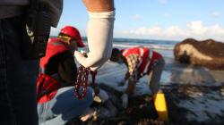 Naufrage en Libye: des centaines de disparus