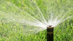 Water Ban Hits Highest Level On Sunshine