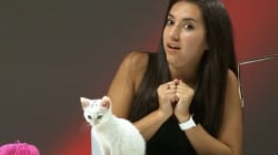 WATCH: People Who Hate Cats Meet Kittens For The First