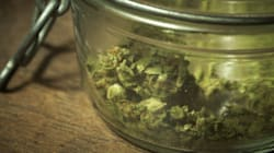 Misinformed Cannabis Policies Prevent Access to Life-Saving