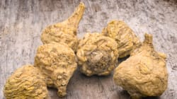 What Is Maca And Why Should You Be Eating