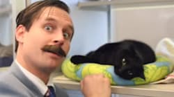 Used 'Cat' Salesman Makes Perfect Pitch For