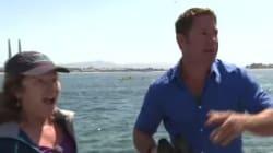 シロナガスクジラに遭遇したBBCの司会者、インタビューを続けられないくらい大興奮