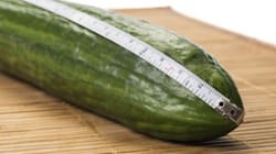 World's Longest Cucumber May Belong To B.C.