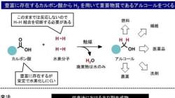 カルボン酸をアルコールに変換 CO2資源化に期待も