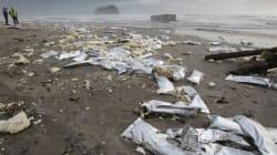 そもそも太平洋沿岸がどれだけ汚染されているか、改めて見てみると...(画像)