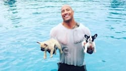 Proof That 'The Rock' Is Basically A