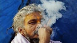 Holy Smokes! Delhi Police Nabbed Record-High Weed Haul This