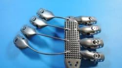 Ces côtes artificielles imprimées en 3D ont sauvé une