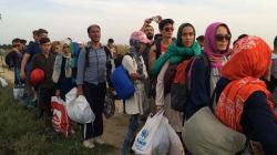 Réfugiés et