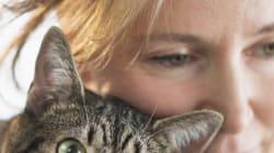 Sola con un gatto. La solitudine della