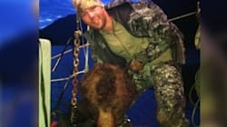 NHL Player Charged With Illegally Hunting B.C. Grizzly