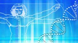 DNA in sharing come una foto su