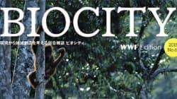 森林セミナー開催報告 消えた熱帯林とプランテーション~持続可能な私たちの暮らしと企業の調達