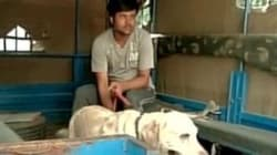 Dear Social Media, Calm Down. Delhi Police Picked Up Somnath Bharti's Dog 'Don' For