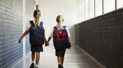 Commissions scolaires, intrigues politiques et écoles