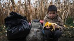 Comment la Syrie est en train de perdre une génération