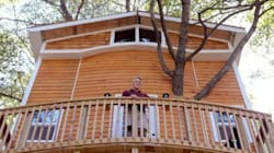 Grandfather Builds The Tree House Of Our