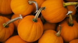 Why America's Pumpkin Shortage Is A Good Thing For