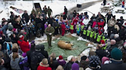 Many Approve A Danish Zoo's Plan To Publicly Dissect A Year-Old