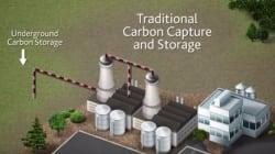 Une entreprise trouve un moyen innovant pour combattre le réchauffement climatique
