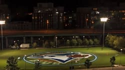 Massive Blue Jays Logo Painted On Toronto Park